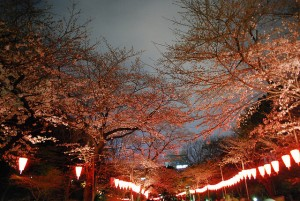 Ueno Park, photo by japanese_craft_construction on Flickr