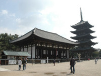 Top 5 Attractions in Nara