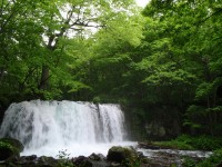 Top 4 Tall Waterfalls in Japan