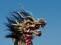 Best Japanese Festivals in November