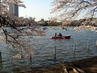 Best Honeymoon Destinations in Japan